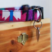 pet collar on wooden box
